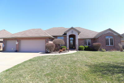 Springfield Single Family Home For Sale: 690 South Wiley Way