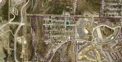 Branson MO Residential Lots & Land For Sale: $99,000