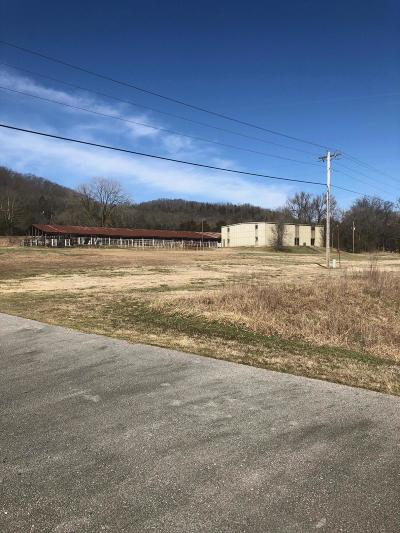 Pineville MO Commercial For Sale: $300,000
