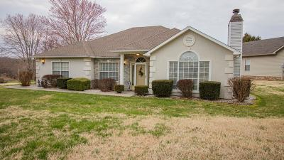 Branson MO Single Family Home For Sale: $248,500
