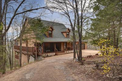Branson West Single Family Home For Sale: 55 Little Memory Lane