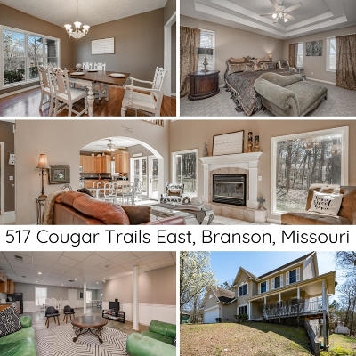 Branson MO Single Family Home For Sale: $355,000