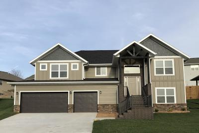 Nixa MO Single Family Home For Sale: $315,000