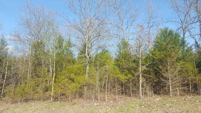 Residential Lots & Land For Sale: 1410 Stoneycreek Circle