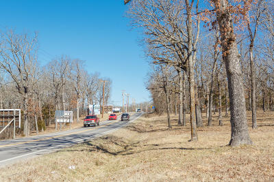 Taney County Commercial For Sale: 15197 Us-160