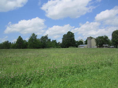 Republic Residential Lots & Land For Sale: 401 South West Avenue