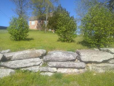 Branson  Residential Lots & Land For Sale: 8 Southview Court