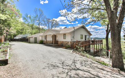 Stone County Single Family Home For Sale: 245 Panorama Point