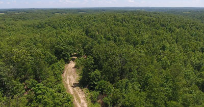 Willow Springs MO Residential Lots & Land For Sale: $147,000