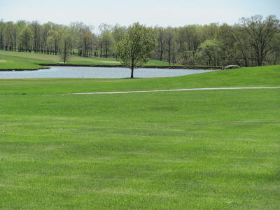 Bolivar Residential Lots & Land For Sale: Tbd Fairway Drive