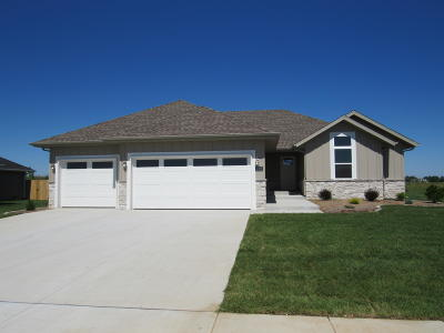 Ozark MO Single Family Home For Sale: $224,900