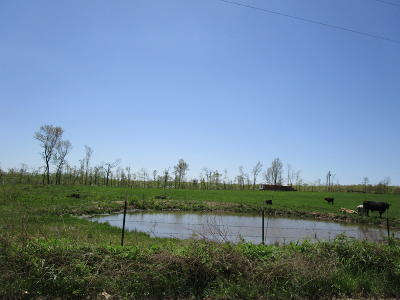 Birch Tree MO Farm For Sale: $75,000