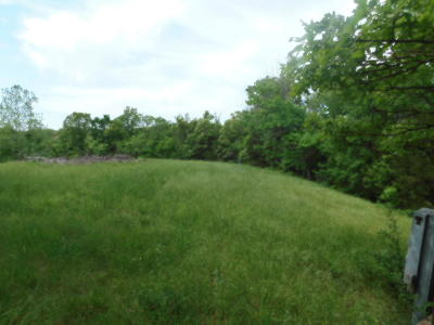 Pineville MO Residential Lots & Land For Sale: $42,500