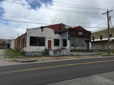 Commercial For Sale: 205 East Commercial Street