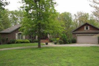 Ozark MO Single Family Home For Auction: $230,000