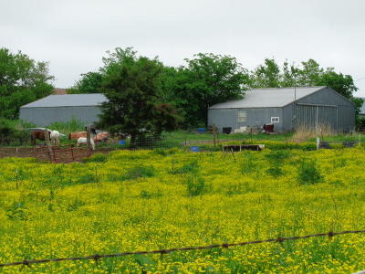 Ozark Farm For Sale: 341 Kentucky Road