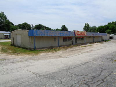 Greene County Commercial For Sale: 310 South Washington Avenue