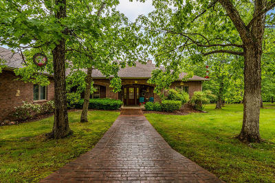 Branson Single Family Home For Sale: 1369 Stormy Point Road