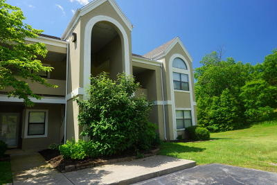 Branson Condo/Townhouse For Sale: 344 Wimbledon #12