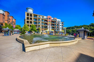 Taney County Condo/Townhouse For Sale: 9207 Branson Landing Boulevard #207