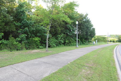 Branson  Residential Lots & Land For Sale: Tbd Cardinal Way