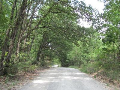 Galena Residential Lots & Land For Sale: L 47 Rivermeade Loop