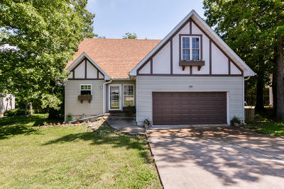 Taney County Single Family Home For Sale: 280 Eagle Drive