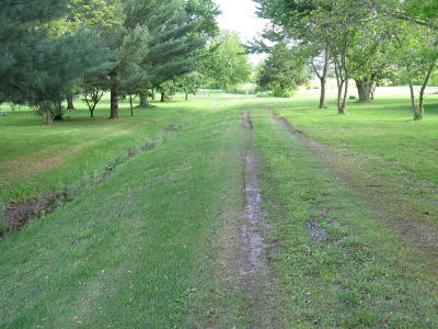 Rogersville Residential Lots & Land For Sale: Xxxx East Farm Road 164