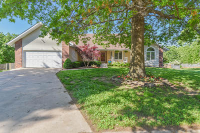 Springfield MO Single Family Home For Sale: $250,000