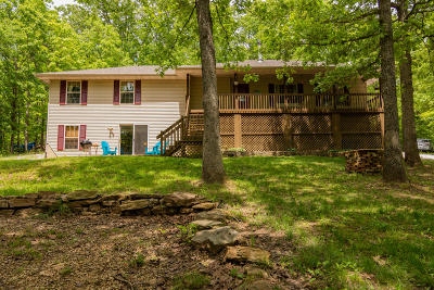 Stone County Single Family Home For Sale: 667 Rainbow Valley Drive
