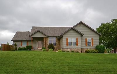 Branson MO Single Family Home For Sale: $247,000