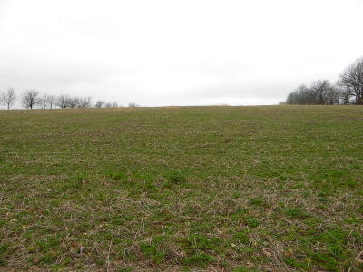 Brookline Residential Lots & Land For Sale: Tbd-Tr12 South Farm Rd. 115