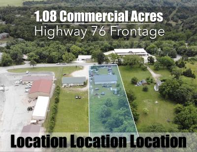 Taney County Commercial For Sale: 1301 East State Hwy 76