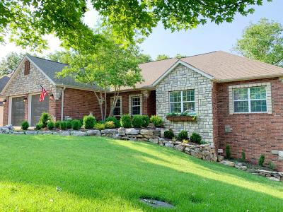 Branson Single Family Home For Sale: 253 Country Bluff Drive