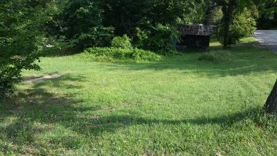 Branson  Residential Lots & Land For Sale: 424 Maddux Street