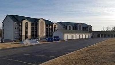 Branson Condo/Townhouse For Sale: 80 Celebration Cove Circle #314