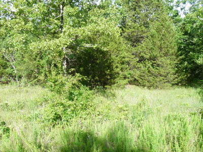Branson  Residential Lots & Land For Sale: 26 Limestone Drive