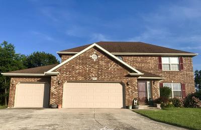 Monett Single Family Home For Sale: 202 Payton Street