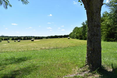 Rogersville Residential Lots & Land For Sale: 4139 South Zion Lane