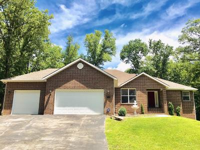 Branson Single Family Home For Sale: 145 Spring Lane