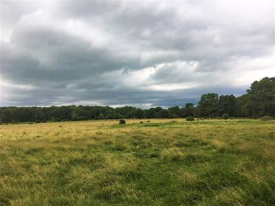 Rogersville Residential Lots & Land For Sale: 999 State Hwy Vv