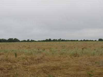 Republic Residential Lots & Land For Sale: Tbd South Farm Rd 107 [tract 6]