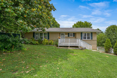 Ozark MO Single Family Home For Sale: $136,000