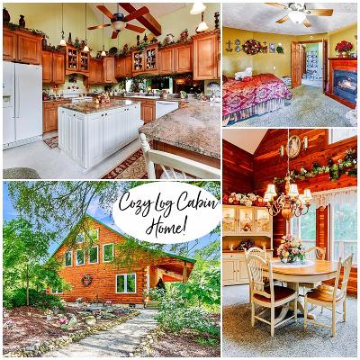 Blue Eye Single Family Home For Sale: 32 Cabin Home Road