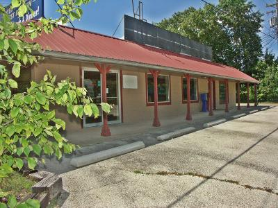 Stone County Commercial For Sale: 14981 Bus Hw 13