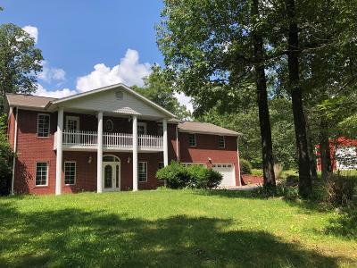 Webster County Single Family Home For Sale: 3910 Frisco Road