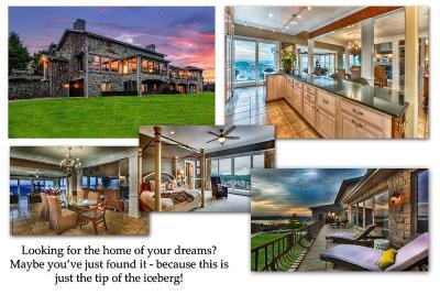 Branson Single Family Home For Sale: 14 Dalton Circle