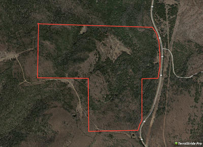Hollister Residential Lots & Land For Sale: Tbd State Highway Jj