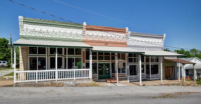 Greene County Commercial For Sale: 59 South Main Street