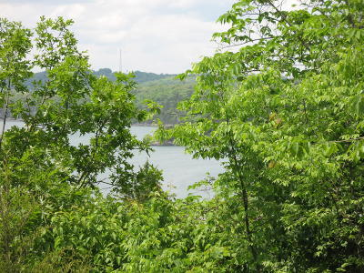 Galena Residential Lots & Land For Sale: Lot 9 Virgin Bluff Drive